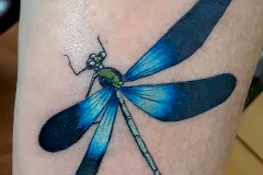 Lee Mother of Dragons dragonfly